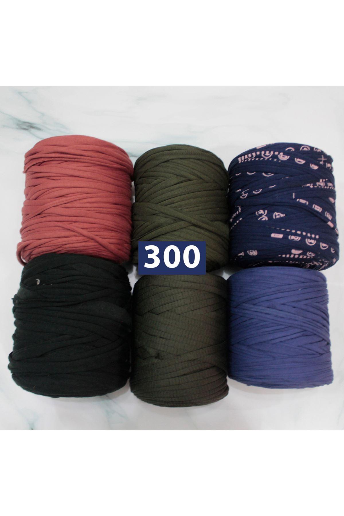 Penye Grup 300
